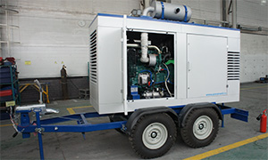 Diesel genset for Dolgoprudnenskoye Scientific Production Plant