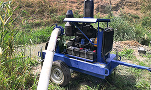 Diesel pumpset for wineyards in Dagestan